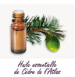 Huile Essentielle de Cèdre (Atlas) 15 ml